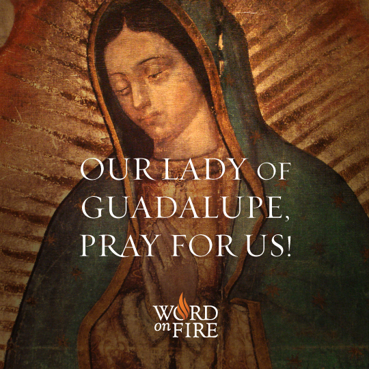 PRAYERGRAPHIC_Guadalupe