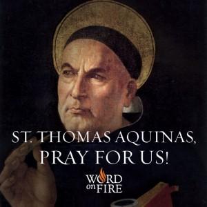 St. Thomas Aquinas 3