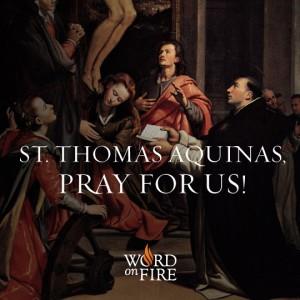 St. Thomas Aquinas 2