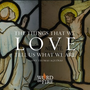 St. Thomas Aquinas – The Things We Love