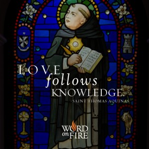 St. Thomas Aquinas – Love Follows Knowledge