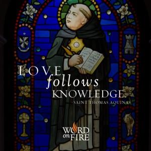St. Thomas Aquinas – Love Follows Knowledge