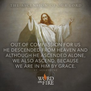 "The Ascension of the Lord – ""Out of compassion…"""