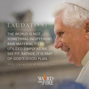 "Laudato Si – ""…part of God's good plan."""