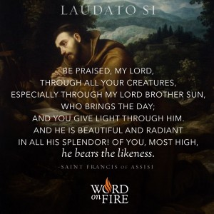 Laudato Si – St. Francis, Brother Sun