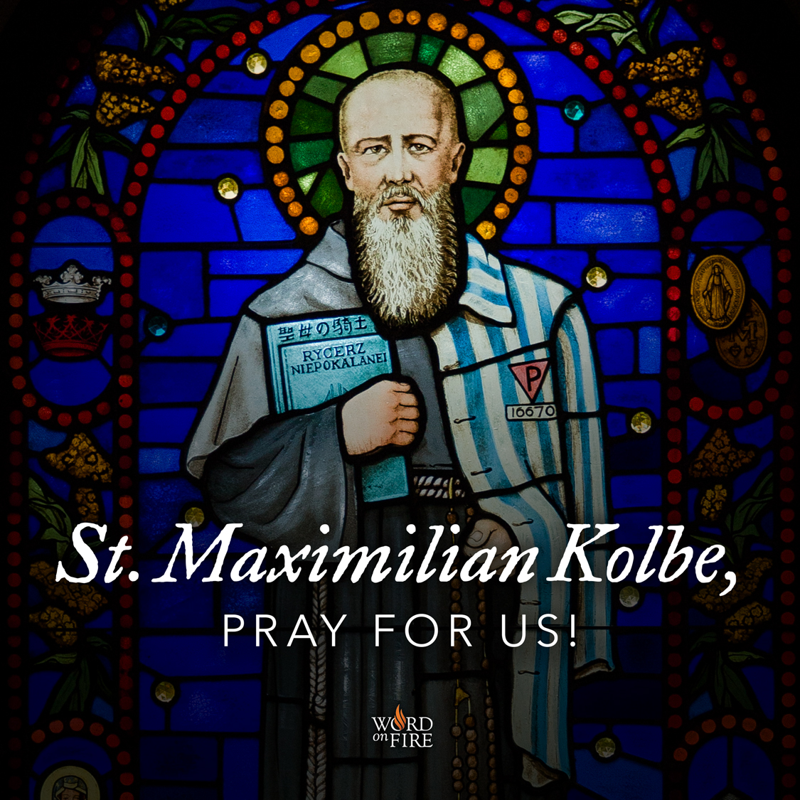 st maximilian kolbe pray for us. Black Bedroom Furniture Sets. Home Design Ideas