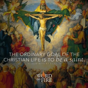 """""""The ordinary goal of the Christian life is to be a saint."""" -Bishop Barron"""