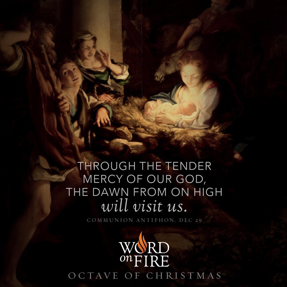 "PrayerGraphics.com » Octave of Christmas Day 5 – ""Through the tender ..."