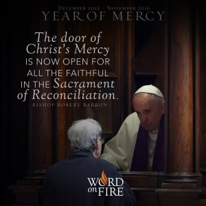 """Year of Mercy – """"The door of Christ's Mercy is now open…"""""""