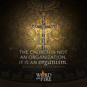 """The Church is not an organization, it is an organism."" -Bl. John Henry Newman"