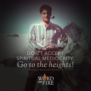 """""""Don't accept spiritual mediocrity. Go to the heights!"""" -Bishop Robert Barron"""