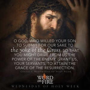 Wednesday of Holy Week