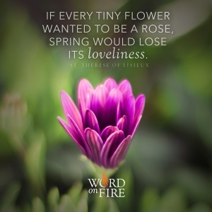 """""""If every tiny flower wanted to be a rose, spring would lose its loveliness."""" -St. Therese of Lisieux"""