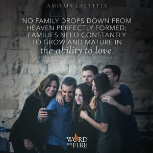 "Amoris Laetitia – ""No family drops down from Heaven perfectly formed…"" -Pope Francis"