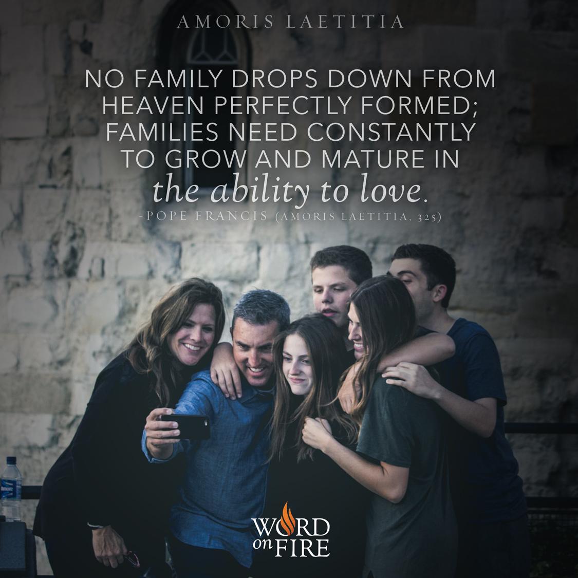 AmorisLaetitia_Family1