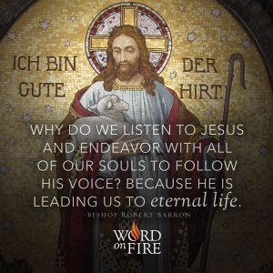 """Why do we listen to Jesus and endeavor with all our souls…"" -Bishop Robert Barron"