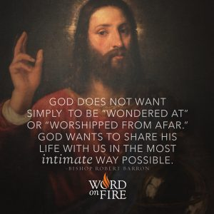 """""""God does not want simply to be """"wondered at"""" or """"worshipped from afar.""""…"""" -Bishop Robert Barron"""