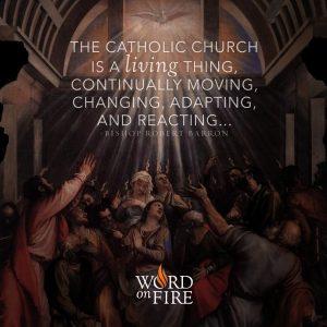 """The Catholic Church is a living thing…"" – Bishop Robert Barron"