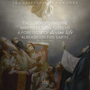 Ascension of the Lord – Foretaste of Divine Life