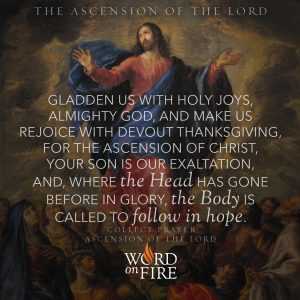 "The Ascension of the Lord – ""Where the Head has gone before in glory, the Body is called to follow in hope."""