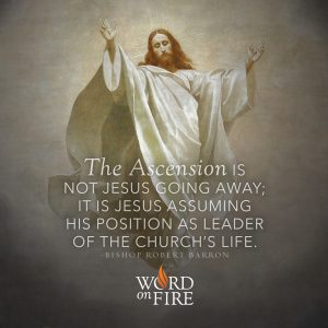 """""""The Ascension is not Jesus going away; it is Jesus assuming his position as leader of the Church's life."""" -Bishop Robert Barron"""