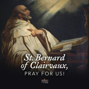 St. Bernard of Clairvaux, pray for us!