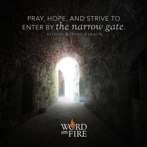 """""""Pray, Hope, and strive to enter by the narrow gate."""" – Bishop Robert Barron"""
