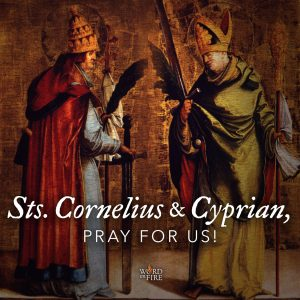 Sts. Cornelius & Cyprian, pray for us!
