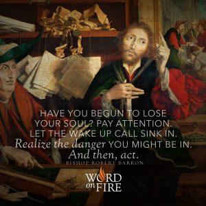 """Have you begun to lose your soul…"" -Bishop Robert Barron"