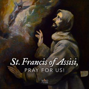 St. Francis of Assisi, pray for us!