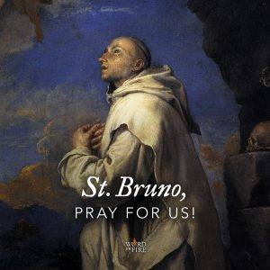 St. Bruno, pray for us!