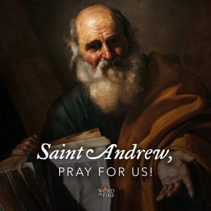 St. Andrew the Apostle, pray for us!