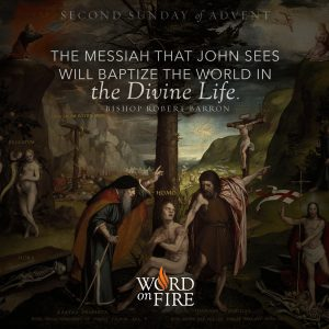 """""""The Messiah that John sees will baptize the world in the Divine Life."""" -Bishop Robert Barron"""