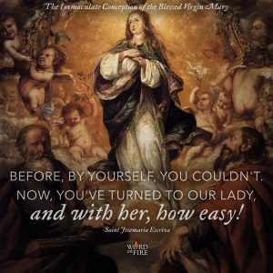 "Immaculate Conception – ""…Now, you've turned to Our Lady…"""