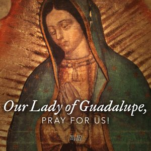 Our Lady of Guadalupe, pray for us!