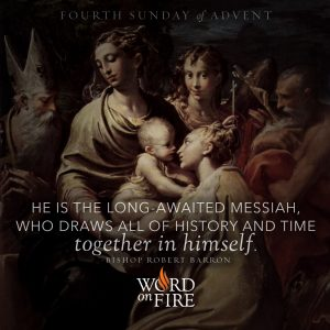 """""""He is the long-awaited Messiah, who draws all of history and time together in himself."""" -Bishop Robert Barron"""