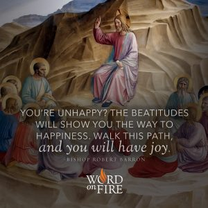 """""""You're unhappy? The Beatitudes will show you the way to happiness. Walk this path, and you will have joy."""" -Bishop Robert Barron"""