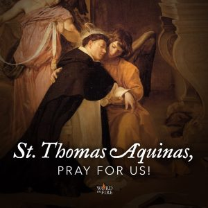 St. Thomas Aquinas, pray for us!