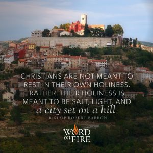 """""""Christians are not meant to rest in their own holiness. Rather…"""" -Bishop Robert Barron"""