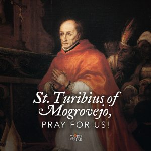 St. Turibius of Mogrovejo, pray for us!
