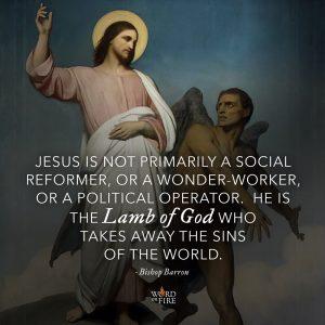 """Jesus is not primarily a social reformer, or a wonder-worker, or a political operator…"" -Bishop Robert Barron"