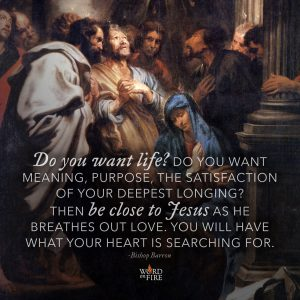 """""""Do you want life? Do you want meaning, purpose, the satisfaction of your deepest longing? Then be close to Jesus…"""" -Bishop Barron"""