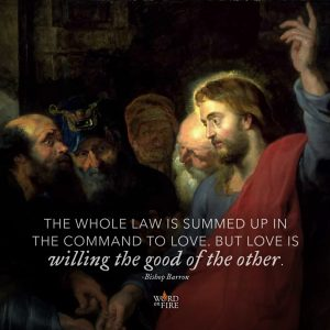 """The whole law is summed up in the command to love. But love is willing the good of the other."" – Bishop Barron"