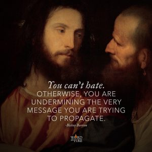 """You can't hate. Otherwise, you are undermining the very message you are trying to propagate."" -Bishop Barron"