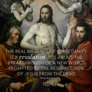 """The real message of christianity is a revolution…"" -Bishop Robert Barron"