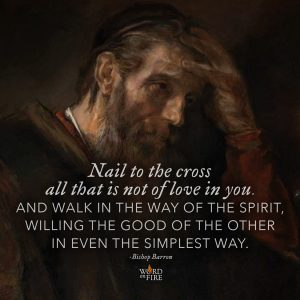 """Nail to the cross all that is not of love in you…"" – Bishop Robert Barron"
