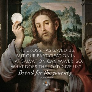 """The Cross has saved us, but our participation in that salvation can waver. So, what does the Lord give us? Bread for the journey. "" – Bishop Robert Barron"